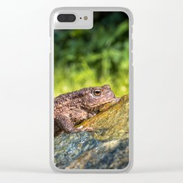Amphibian, Common British Toad / Frog Clear iPhone Case