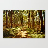 neverland Canvas Prints featuring Neverland by Mike Shaheen