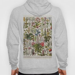 Adolphe Millot - Plantes Medicinales A - French vintage poster Hoody