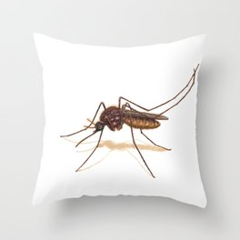 Mosquito by Lars Furtwaengler | Colored Pencil / Pastel Pencil | 2014 Throw Pillow