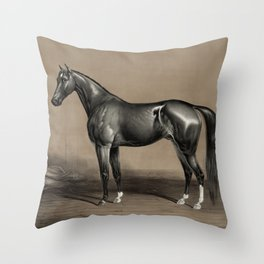 Trotting Champion Stallion - Mambrino - Vintage Horse Racing Throw Pillow