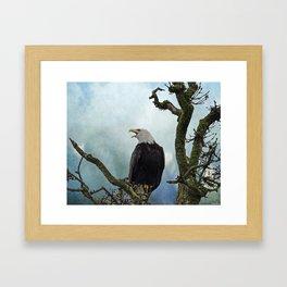 Eagle Art - Character Framed Art Print