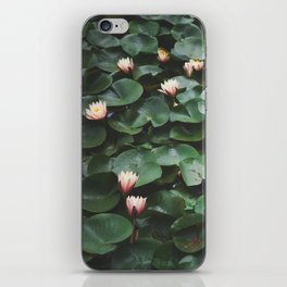 Echo Park Waterlillies iPhone Skin