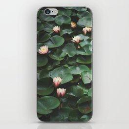 Echo Park Waterlillies iPhone Skin