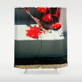 Pretty Heavy Stuff Shower Curtain