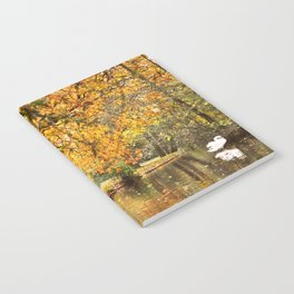 The swan Notebook