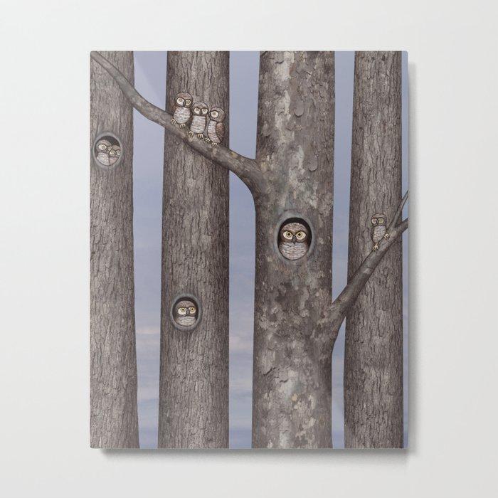 owls in trees Metal Print