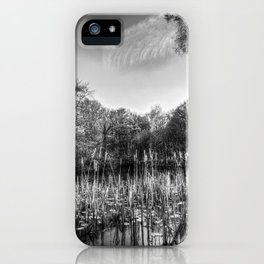 The Bulrush Pond iPhone Case
