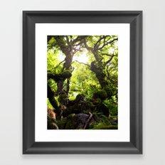 Wistman's Wood Framed Art Print