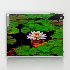 From the Lilypads Laptop & iPad Skin