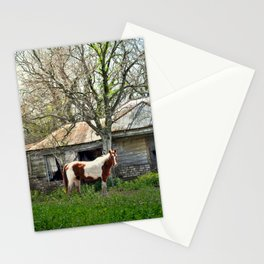 Lonely Horse Stationery Cards