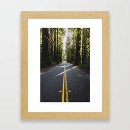 Redwoods Road Trip - Nature Photography Framed Art Print