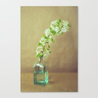 blossom Canvas Prints featuring Blossom by Jessica Torres Photography