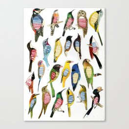 Birds and their insides Canvas Print