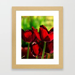 4 Ever Love -- Spring Botanical Ruby Red Tulips Framed Art Print