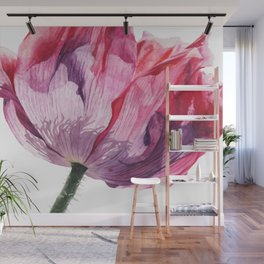 The Oriental Poppy, Realistic Watercolor Botanical Painting Wall Mural