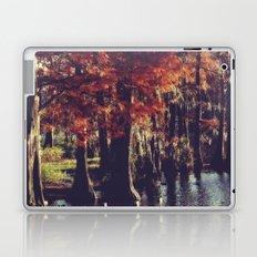 Autumn Cypress Laptop & iPad Skin