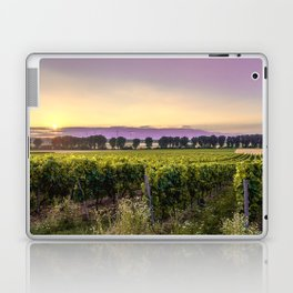 grapevine field Laptop & iPad Skin