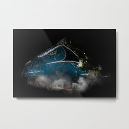 Mallard Steam Metal Print
