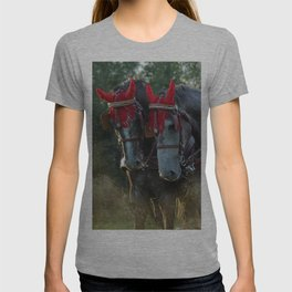 Carriage horses T-shirt