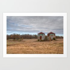 A Cloudy Winter Day in Rural Georgia Art Print
