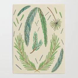 Pine Bough Study Poster