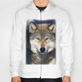 Timber Wolf - Ready to Run - Photography Hoody