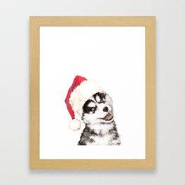 Christmas Baby Husky Framed Art Print