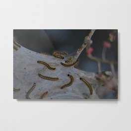 Waiting for Change Metal Print