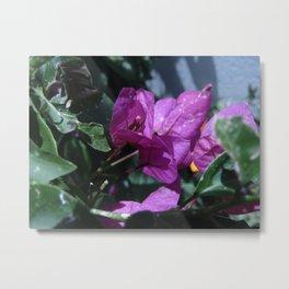 Flowers #8 Metal Print