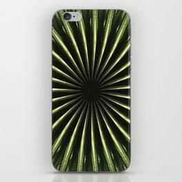 Cactus Garden Kaleidoscope 3 iPhone Skin