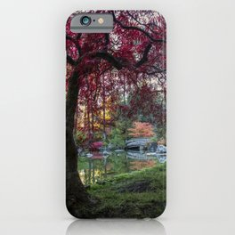 Japanese Maple Sunburst iPhone Case