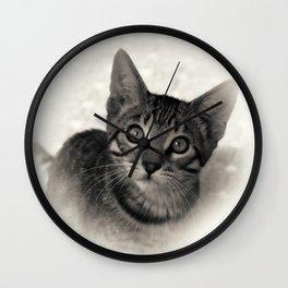 Cute Bengal Kitten Wall Clock