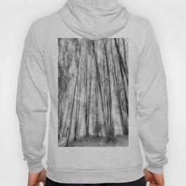 The Ghost Forest Hoody