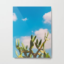 Beautiful Vintage Photo Green Cactus With Blue Sky White Cloud Metal Print