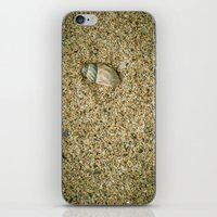 seashell iPhone & iPod Skins featuring Seashell by Errne