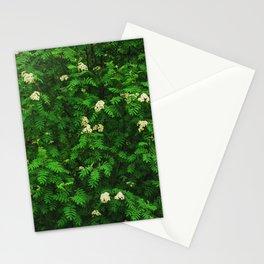 Greenery II Stationery Cards