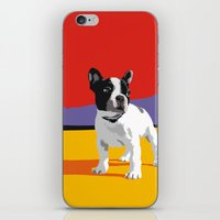 boston terrier iPhone & iPod Skins featuring Boston terrier by Matt Mawson