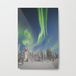 Norwegian forest Metal Print