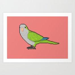 Pixel / 8-bit Parrot: Green Quaker Parrot Art Print