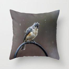 Tufted Titmouse shaking off the rain Throw Pillow