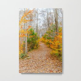 Never Ending Path Metal Print