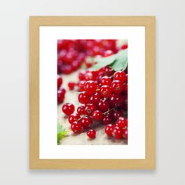 ripe red currant berries close up shot Framed Art Print