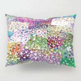 Rainbow Terra Firma Pillow Sham