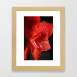 Hither Framed Art Print