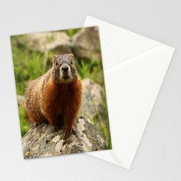 On The Rocks Marmot Stationery Cards