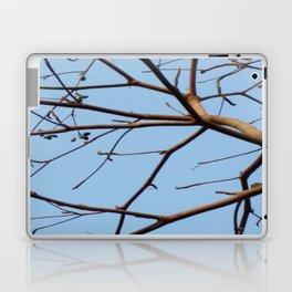 BARE & THERE Laptop & iPad Skin
