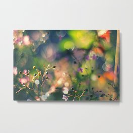 The Rainbow Forest I Metal Print