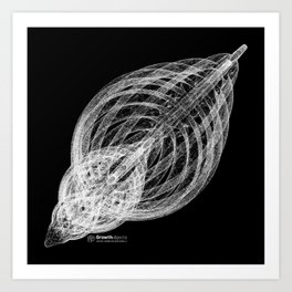 GEOMETRIC NATURE: SLICED SHELL b/w Art Print