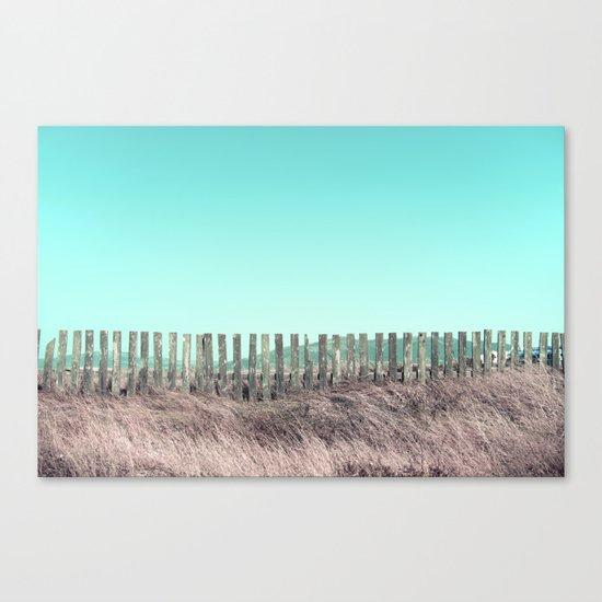 Candy fences Canvas Print
